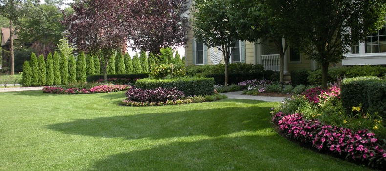 10 Benefits Of Professional Lawn Maintenance In Nj